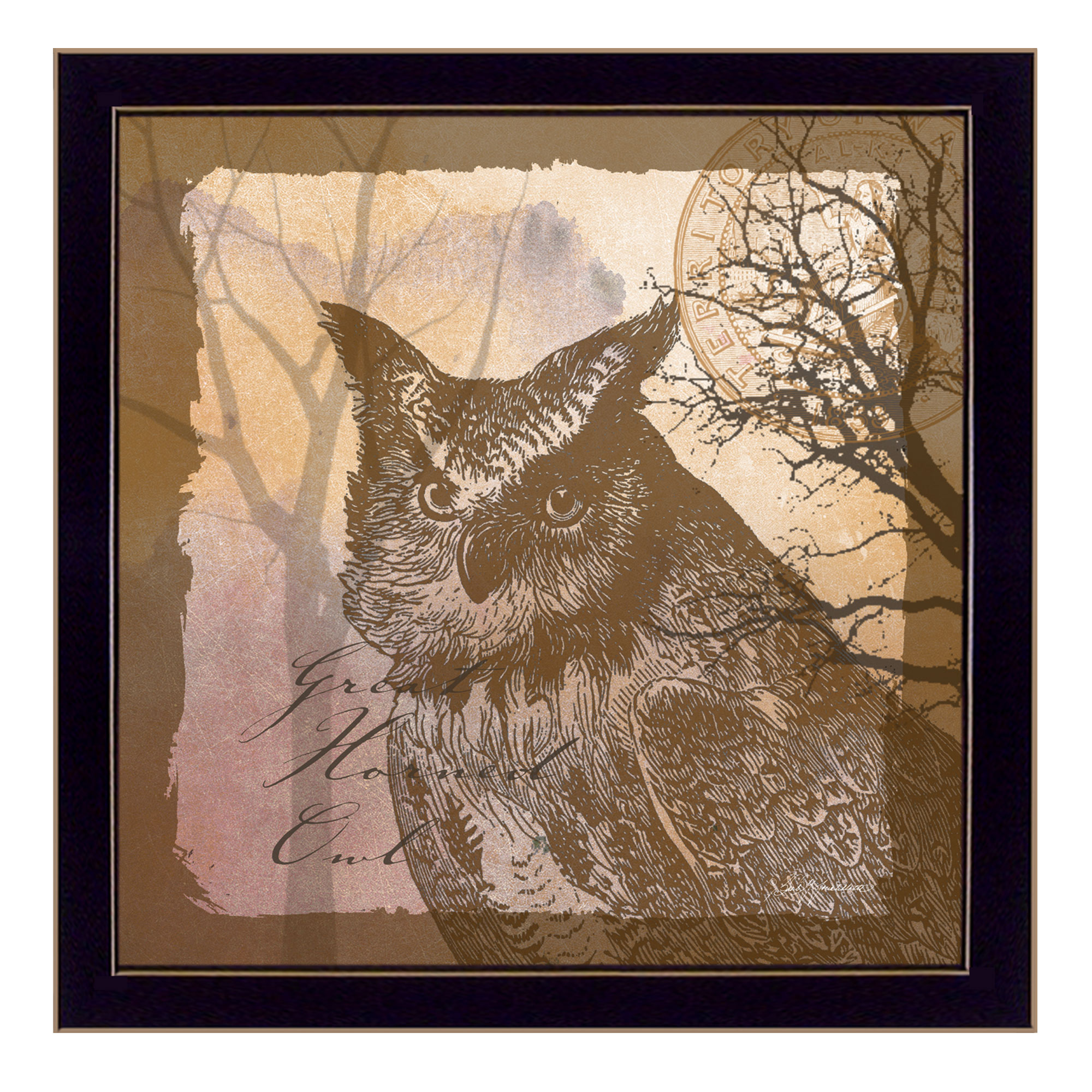 Owl by barb tourtillotte printed framed wall art
