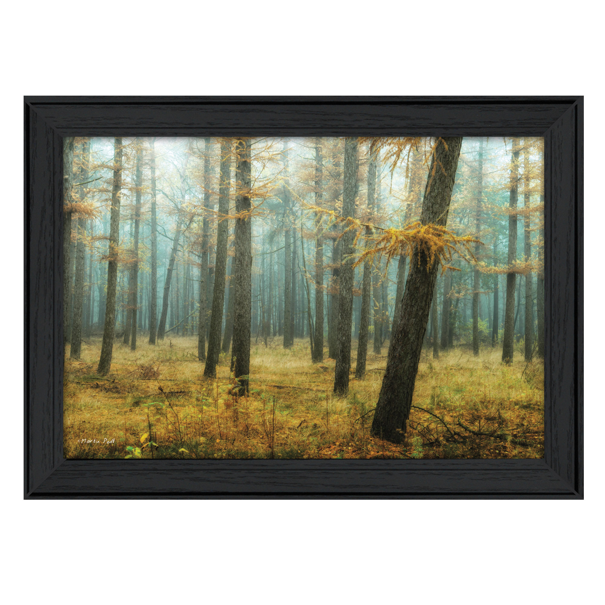 Holterberg in the Mist  by Martin Podt Printed Framed Wall Art