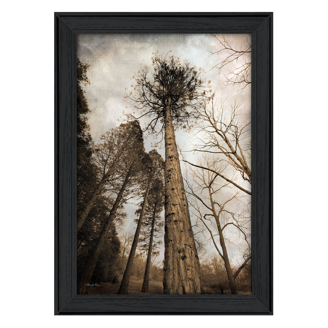 Buy 14x38 poster frames